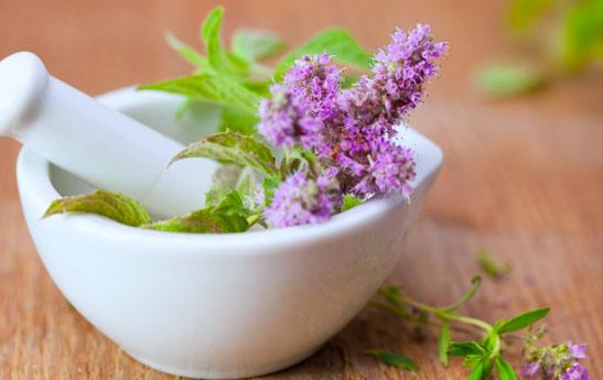 ارزش گیاهان و مکمل های دارویی