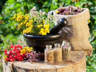 طب سنتی؛ ميراثی گرانبها