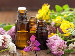تاثیر گیاهان دارویی بر اعصاب و روان