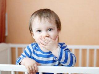 شیر مادر سلطان شیرها (2)