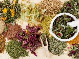 راهنمای خرید گیاهان دارویی از عطاری