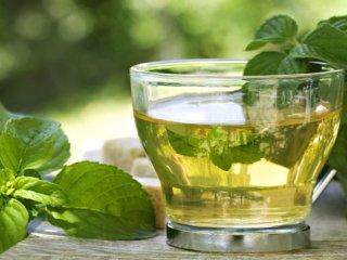 چای سبز و لاغری (1)