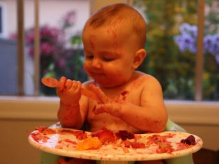 تغذیه نوزادان عجول (1)