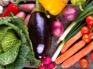 تغذیه در طب سنتی (5)
