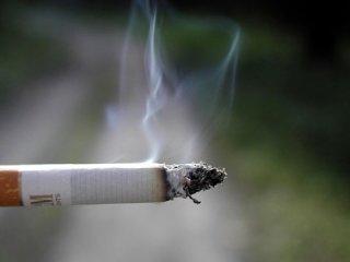 چگونه سیگار كُشی كنیم (1)