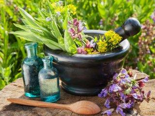 همه چیز در مورد گیاهان دارویی (2)