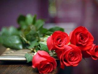 پدیده ای به نام عشق و محبت (2)
