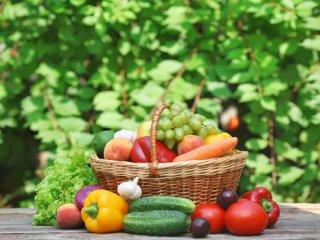 نقش تغذیه در تقویت سیستم ایمنی (2)