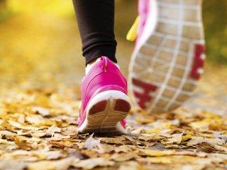 فعالیت بدنی (1)