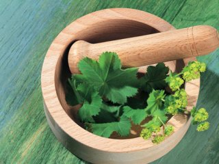 جایگاه گیاهان دارویی در برنامه غذایی (2)