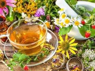 طب سنتی یا طب جدید؟ (1)