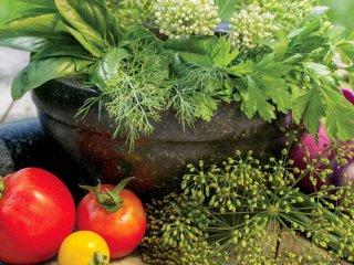 گیاهان دارویی و معطر (2)