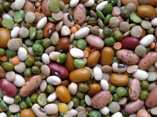 دانههای خوشمزه و مغذی