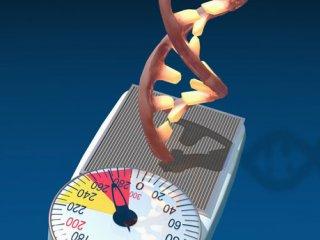 تاثیر ژنتیک بر چاقی کودکان