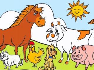 مزرعه حیوانات