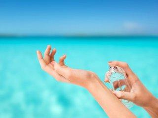بسته موضوعی 84: عطرهای خنک برای تابستان گرم