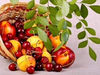 اثرات سبزیجات و میوهجات بر بیماری ALS