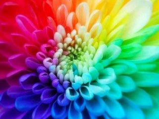 انرژی رنگ ها و رنگ درمانی در سردرد