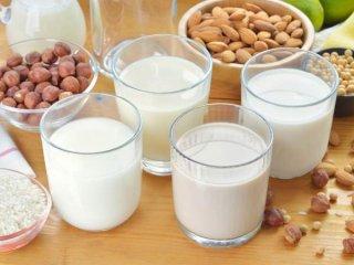 جایگزین های لبنیات برای کسانی که به لاکتوز حساسیت دارند