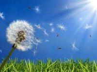 راههای درمان آلرژی