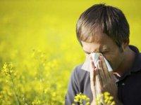 آلرژی و حساسيتهای فصلی