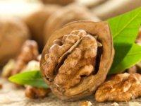 خواص درمانی و فوايد غذايی گردو- قسمت اول