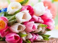 ميلاد پيامبر اعظم (ص) و روز اخلاق و مهر ورزی