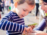 تغذیه کودک در ایام نوروز (2)