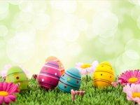 بسته موضوعی 73: ایده های جالب تخم مرغ رنگی
