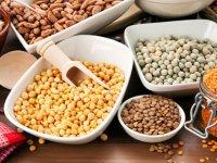 تغذیه بیماران مبتلا به سرطان (2)
