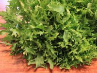 انواع کاشت سبزیجات در منزل