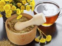 داروهای گیاهی و سنتی: بایدها و نبایدها در جامعه (1)