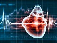 توصیههایی برای بیماران قلبی درنوروز