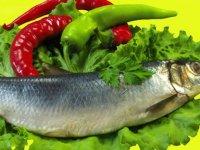 نکات تغذیهای در ایلئوستومی و کولستومی