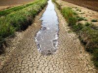 بحران خشکسالی را جدی بگیریم