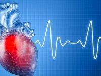 ارتباط چربی خون با بیماریهای قلب و عروق