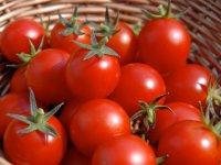 لیکوپن گوجه فرنگی، سپری در برابر بیماری قلبی