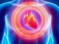 قلب و طب چینی