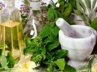 کلید سلامتی در دستان معجزه آسای گیاهان دارویی