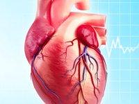 بیماری های ایسكمیك قلبی کدامند؟