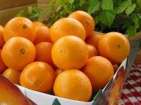 پرتقال؛ پاک کننده خلط های مضر بدن
