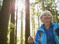 12 مکمل مفید برای یائسگی