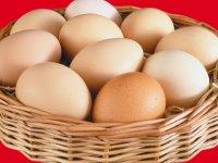 یک تخم مرغ چقدر پروتئین دارد؟