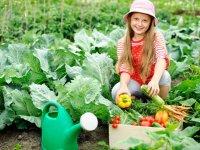 غذای سالم، مهارت خواندن بهتر