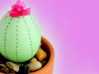 تخممرغ های کاکتوسی