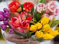 گل چه رنگی هدیه بدهیم؟
