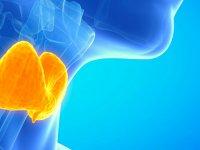 اختلالات تیروئید را با غذا کنترل کنیم