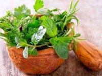 میگرن و حمام كردن با داروهای گیاهی آرامبخش
