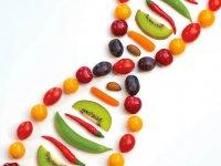 بهترین رژیم غذایی بر اساس ژن ها