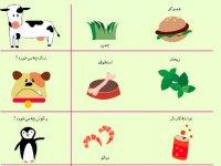 حیوانات چه میخورند؟